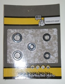 90000-035-000P Aftermarket Oil Seal Kit
